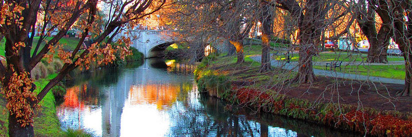 Christchurch Fall Colors