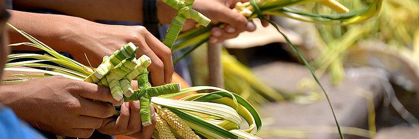 Tegucigalpa Palm Sunday